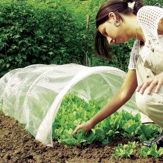 Frau die Salat aus dem Frühbeet Tunnel erntet